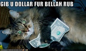 GIB U DOLLAR FUR BELLAH RUB