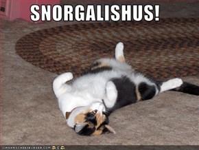 SNORGALISHUS!