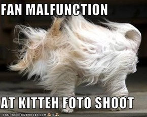 FAN MALFUNCTION  AT KITTEH FOTO SHOOT