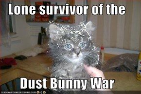 Lone survivor of the   Dust Bunny War