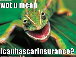 wot u mean  icanhascarinsurance?
