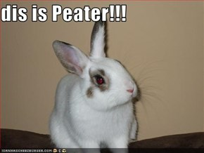 dis is Peater!!!