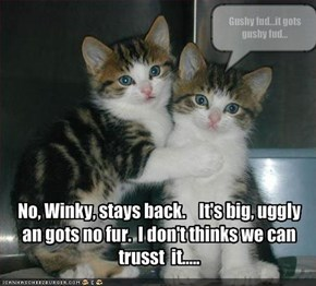 No, Winky, stays back.    It's big, uggly an gots no fur.  I don't thinks we can trusst  it.....