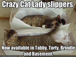 Crazy Cat Lady slippers