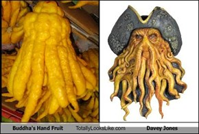 Buddha's Hand Fruit Totally Looks Like Davey Jones