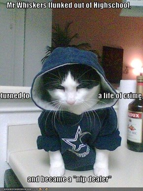 """Mr Whiskers flunked out of Highschool, turned to                                               a life of crime, and became a """"nip dealer"""""""