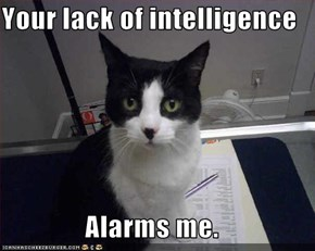 Your lack of intelligence  Alarms me.