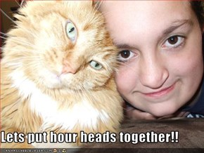 Lets put hour heads together!!