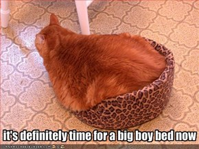 it's definitely time for a big boy bed now