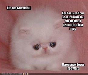 Dis am Snowball