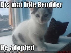 Dis mai litle Brudder  He adopted