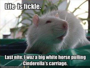 Life  is fickle.