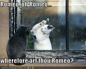 Romeo, oh Romeo...  wherefore art thou Romeo?