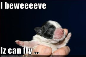 I beweeeeve  Iz can fly ...