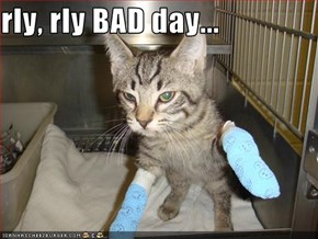 rly, rly BAD day...