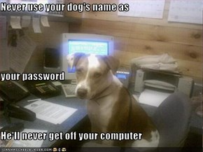 Never use your dog's name as  your password He'll never get off your computer