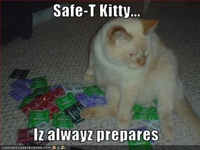 Safe-T Kitty...  Iz alwayz prepares