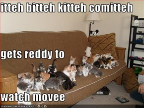 itteh bitteh kitteh comitteh gets reddy to  watch movee