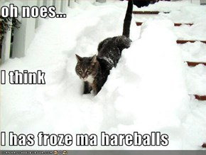 oh noes... I think I has froze ma hareballs