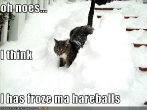 oh noes... I think I has froze ma hareballs