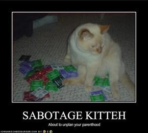 SABOTAGE KITTEH