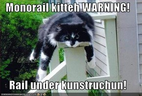 Monorail kitteh WARNING!  Rail under kunstruchun!