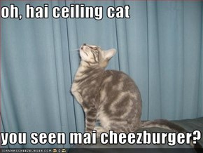 oh, hai ceiling cat  you seen mai cheezburger?
