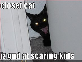 closet cat  iz gud at scaring kids