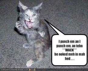 I punch em an I punch em, an tehn***WACK***he noked meh in mah hed . . .