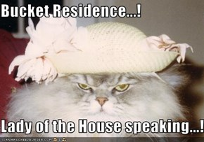 Bucket Residence...!  Lady of the House speaking...!