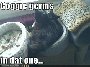 Goggie germs  in dat one...