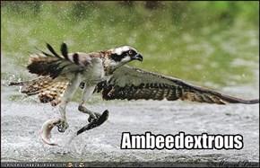 Ambeedextrous