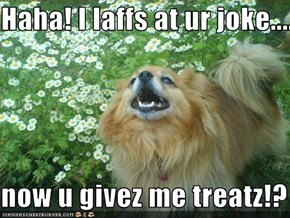 Haha! I laffs at ur joke......  now u givez me treatz!?