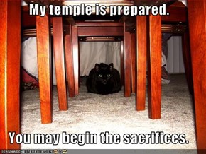 My temple is prepared.  You may begin the sacrifices.
