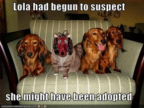Lola had begun to suspect  she might have been adopted