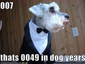 007  thats 0049 in dog years