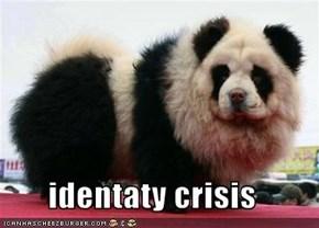 identaty crisis