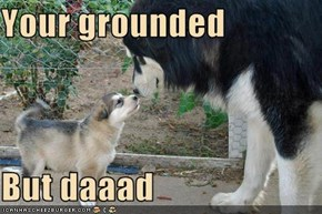 Your grounded  But daaad