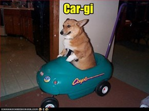 Car-gi