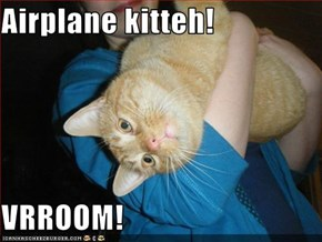 Airplane kitteh!   VRROOM!