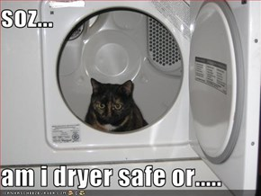 soz...  am i dryer safe or.....