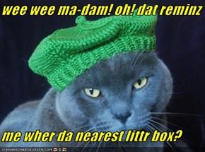 wee wee ma-dam! oh! dat reminz  me wher da nearest littr box?