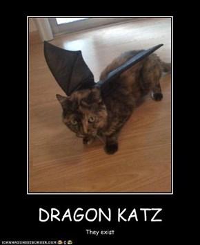 DRAGON KATZ