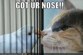 GOT UR NOSE!!