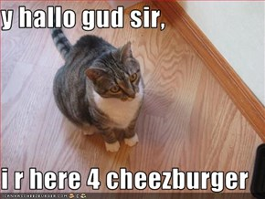 y hallo gud sir,  i r here 4 cheezburger