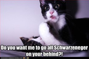 Do you want me to go all Schwarzeneger on your behind?!