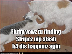 Fluffy vowz tu finding Stripez nip stash b4 dis happunz agin