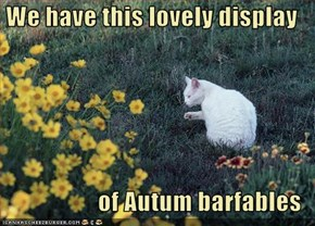 We have this lovely display  of Autum barfables