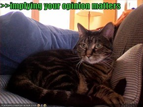 >>implying your opinion matters