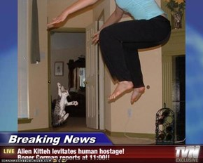 Breaking News - Alien Kitteh levitates human hostage! Roger Corman reports at 11:00!!